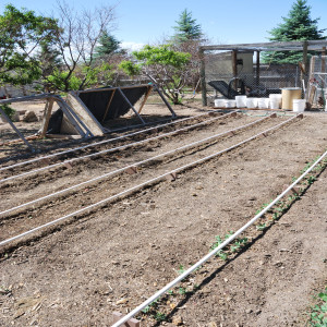 Overall of drip lines
