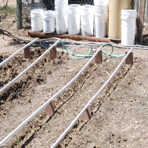 End of drip lines