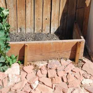 Planter Box by the Fence