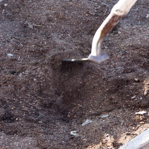 Dirt is moved up to the sides of the hole.