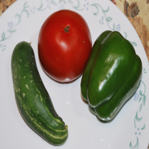 Samples of cucumbers, pepper and tomato