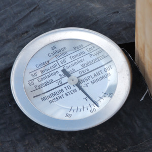 Soil Thermometer up close