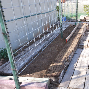 Planting Area for Climbing Plants April 07, 2014