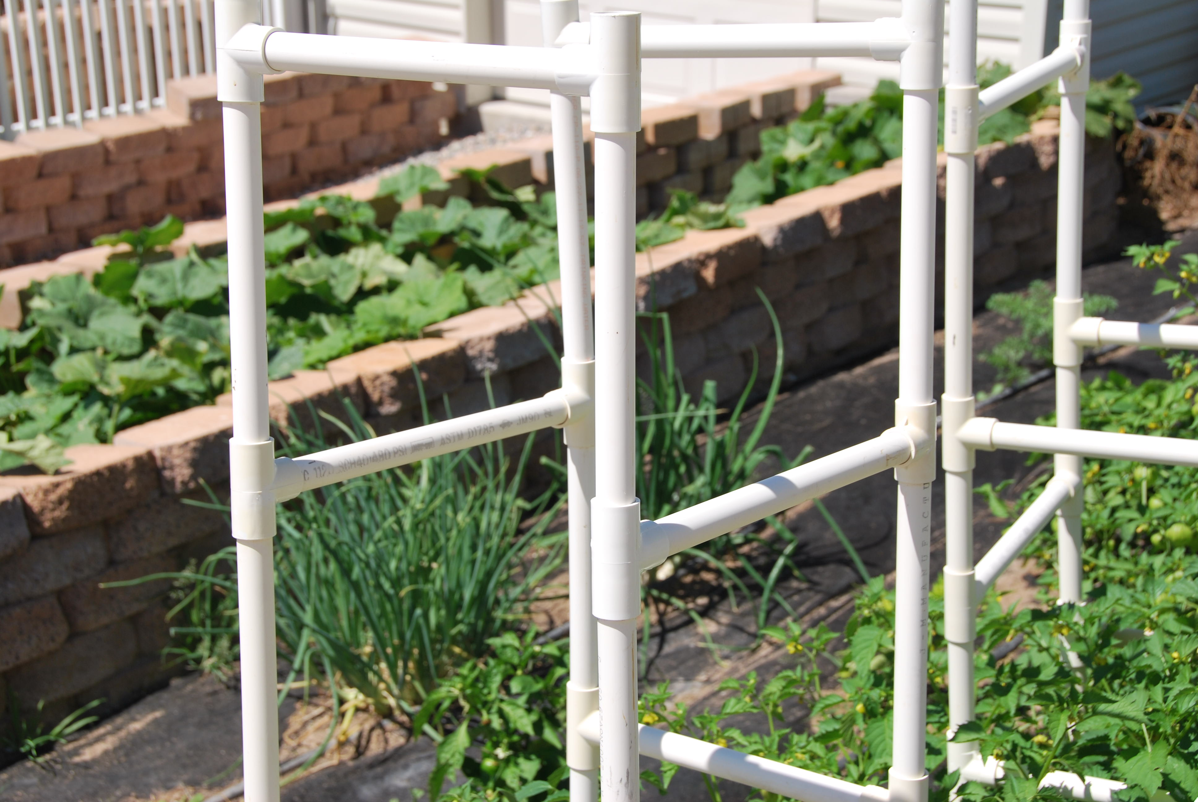Tomato Cages And Growth Protection 187 Enoch Gardens