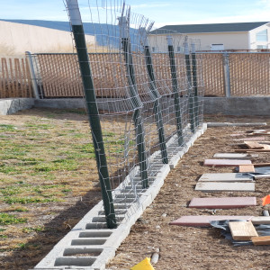 Don's Support Fences for Peas and Beans